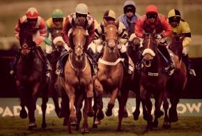 Cheltenham Racecourse 2014