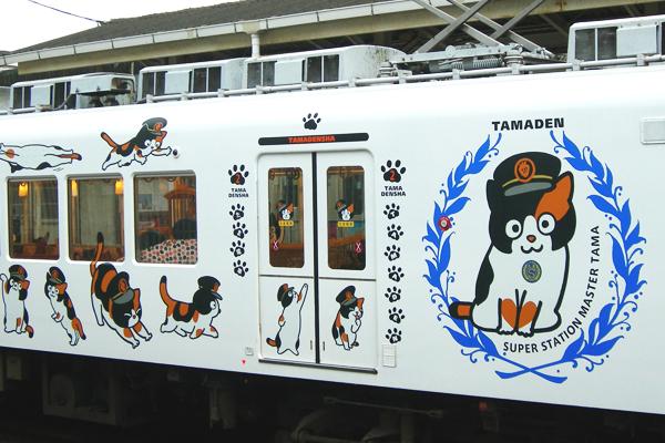 tama_chan_cat_train_look