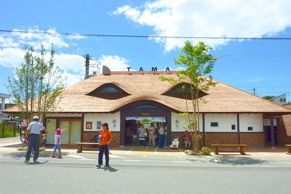 tama_chan_cat_train_station_facility